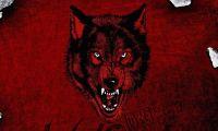 nwowolfpac31